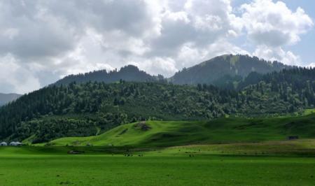5月份新疆伊犁喀纳斯旅游包车10日自由行